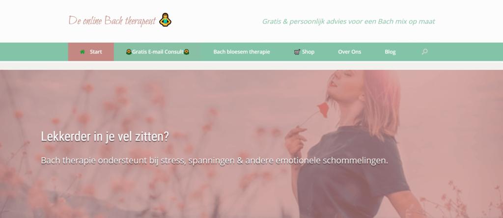 Een voorbeeld van voor jezelf beginnen zonder geld met een online praktijk